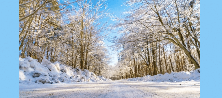 Putting Your Utility Trailer To Work This Winter